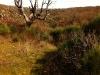 sendero_playa_salvaje_puente_resbala_bermellar   Casas Rurales con Spa Privado Románticas con Encanto a 3 H de Madrid